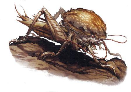 fungal-crawler